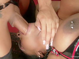Lisa Tiffian submits to TS Honey Foxxx and her big Ebony Cock