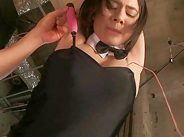 Aimi Yoshikawa in Machines Make Bunny Girl Cum - MilfsInJapan