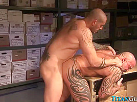 Muscly studs cum in comp