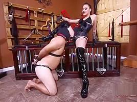 Sasha Foxxx Strapon Humilhation