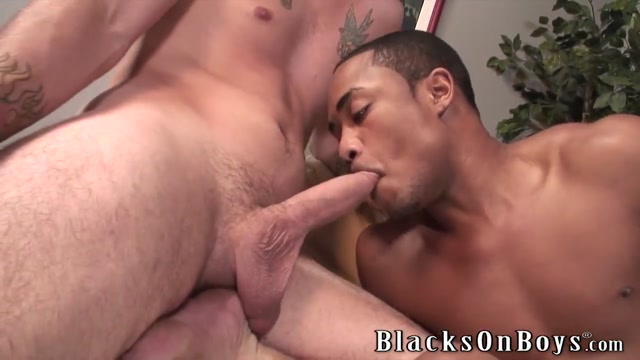 Chase Evans Is Hungry For Some Black Cock Free hardcore porn sample clip