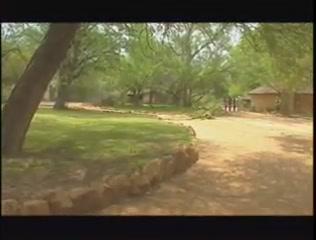 Safari tourist wife gangbang FUN MOVIES very Sexy Larissa