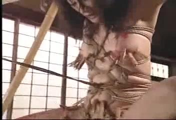 japanese ropebondage9 Miley cyrus so sexy naked