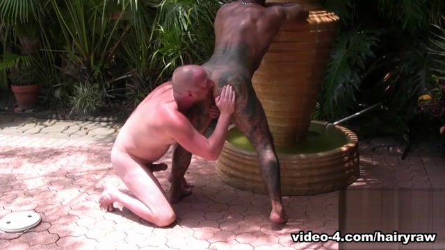 Bo Bangor and Dalton Hawg - HairyAndRaw Sexy fuck in Embalenhle