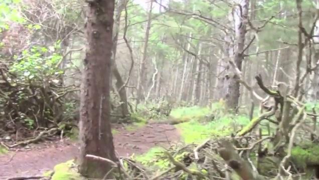 Forest masturbating ryder skye milf jaculation rapidshare