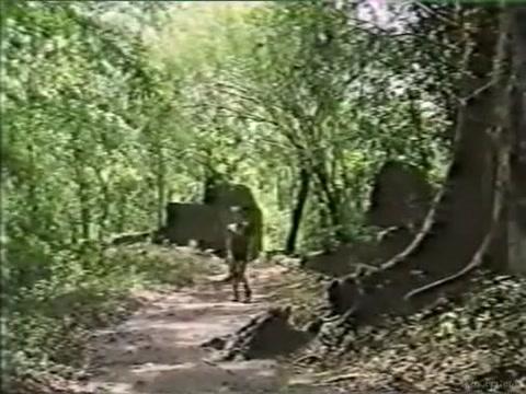 Rosa Caracciolo - Tarzan #2 (1995) What should the girl do in bed