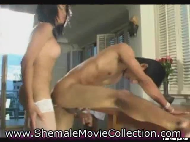 Sheboy Coeds And T-Girl Brides! watch sex porn movies film