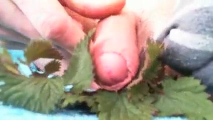 Stinging NETTLES cock torture Webcam caught mom