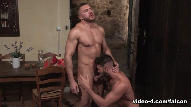 Hung Country XXX Video: Emir Boscatto, Dani Robles - FalconStudios Nude male egyptian bodybuilders