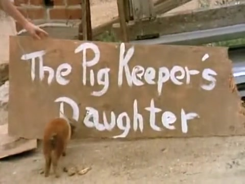 The Pigkeepers Daughter