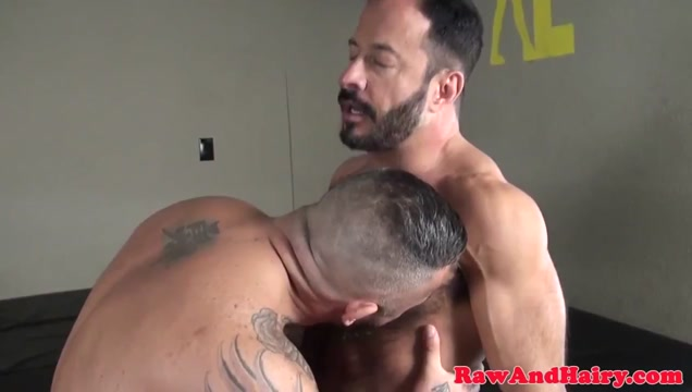 Muscular bears breeding and cocksucking Kneeling black cock