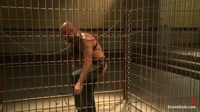 Caged and fucked like an animal kim kardashian free naked pics