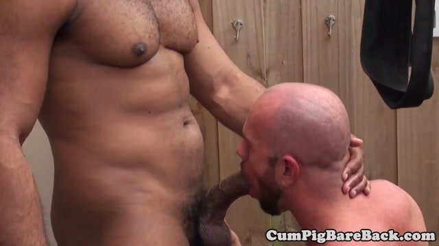 Suspended DILF bear barebacked by BBC Horny lesbain chick sex