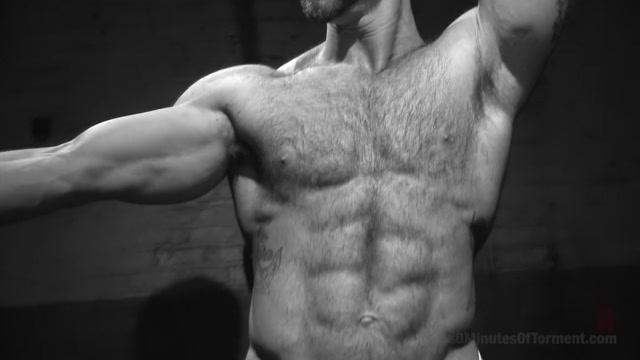 A Bodybuilders Worst Nightmare Free hot babes porn gallery
