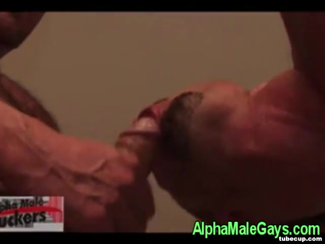 Gay studs cluster fuck rimming action Top hookup apps 2018