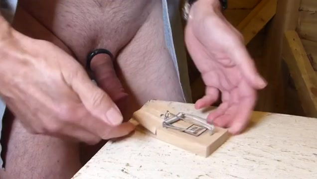 CBT - Mouse Trap free gay group sex videos