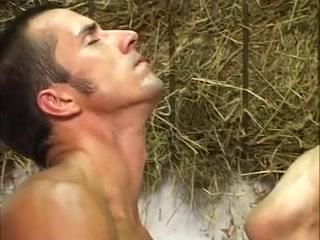 Stallburschen. Hengste und Hengste grewich village gays begin movie