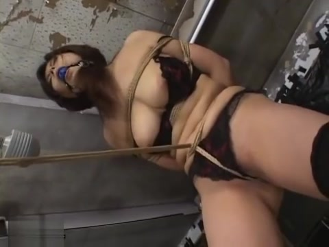 Uncensored Amateur Japanese Bondage Sex Adult golden retrievers for sale