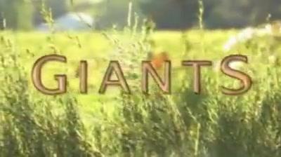 Giants (1) vitamins vagina strong smell