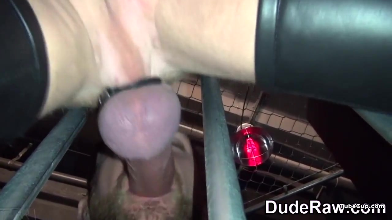 Leather bear and cub suck wet pussy fucked by huge cock