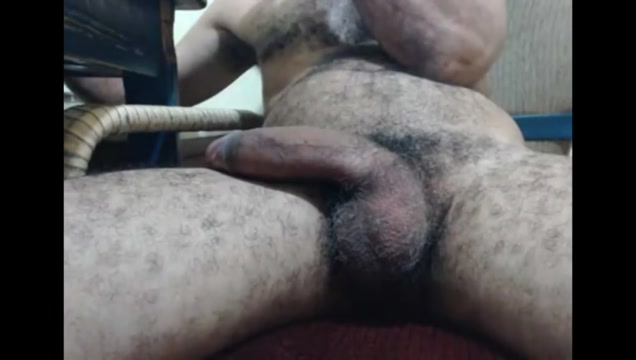 Papa has a big hairy donkey dick Adult face to face website sex chat