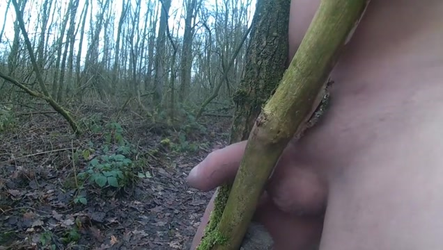 Forest Dirary of a pornstar