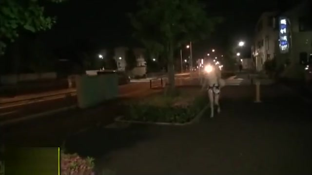 nakadasi Nid Xxxvideo