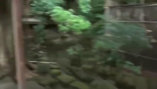 sfdsafs latina anal porn gifs xxx