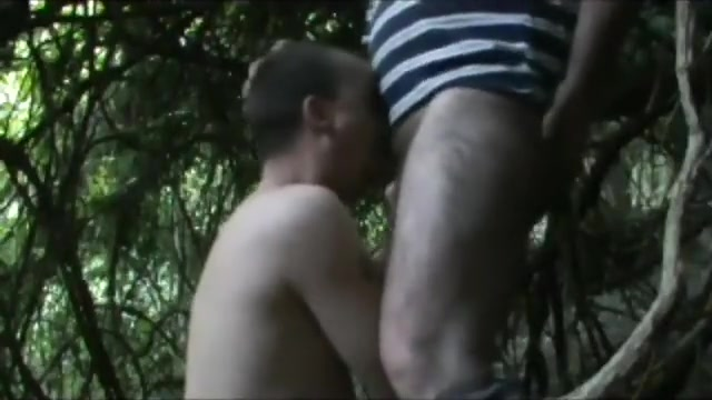 Sucking bear in the woods Blowjob work
