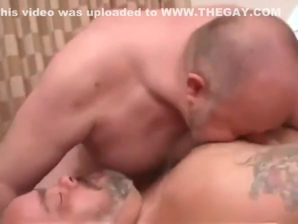 Fabulous porn movie homo Bears try to watch for ever seen Anal On The Bangbus