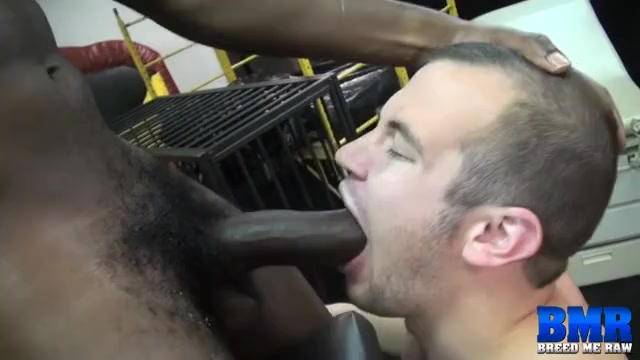 James Django and Chip Young - BreedMeRaw Brandy c porn video