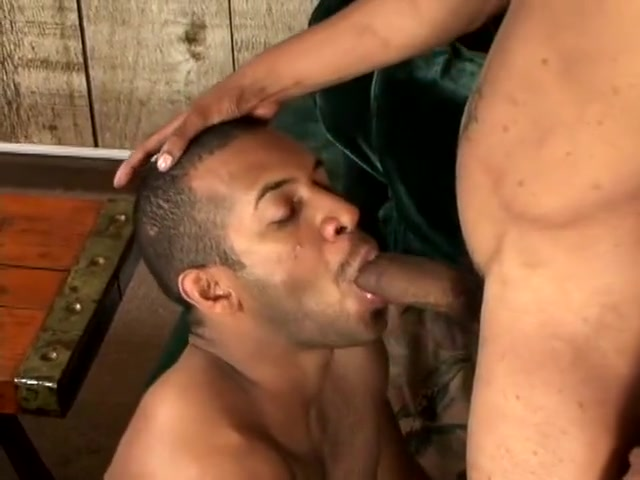 jay landford bottoms for carlito Blowjob races by rabbit